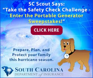 SC Department of Insurance Portable Storm Generator Graphic